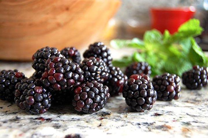 paleo diet, paleo recipes, Blackberry Roll Ups