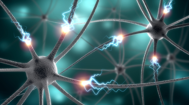 types of epilepsy, epilepsy, epilepsy symptoms