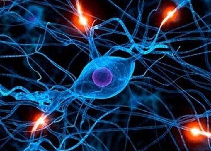 Types of Epileptic Seizures, epileptic seizures, tonic seizure, clonic seizure, tonic-clonic seizure